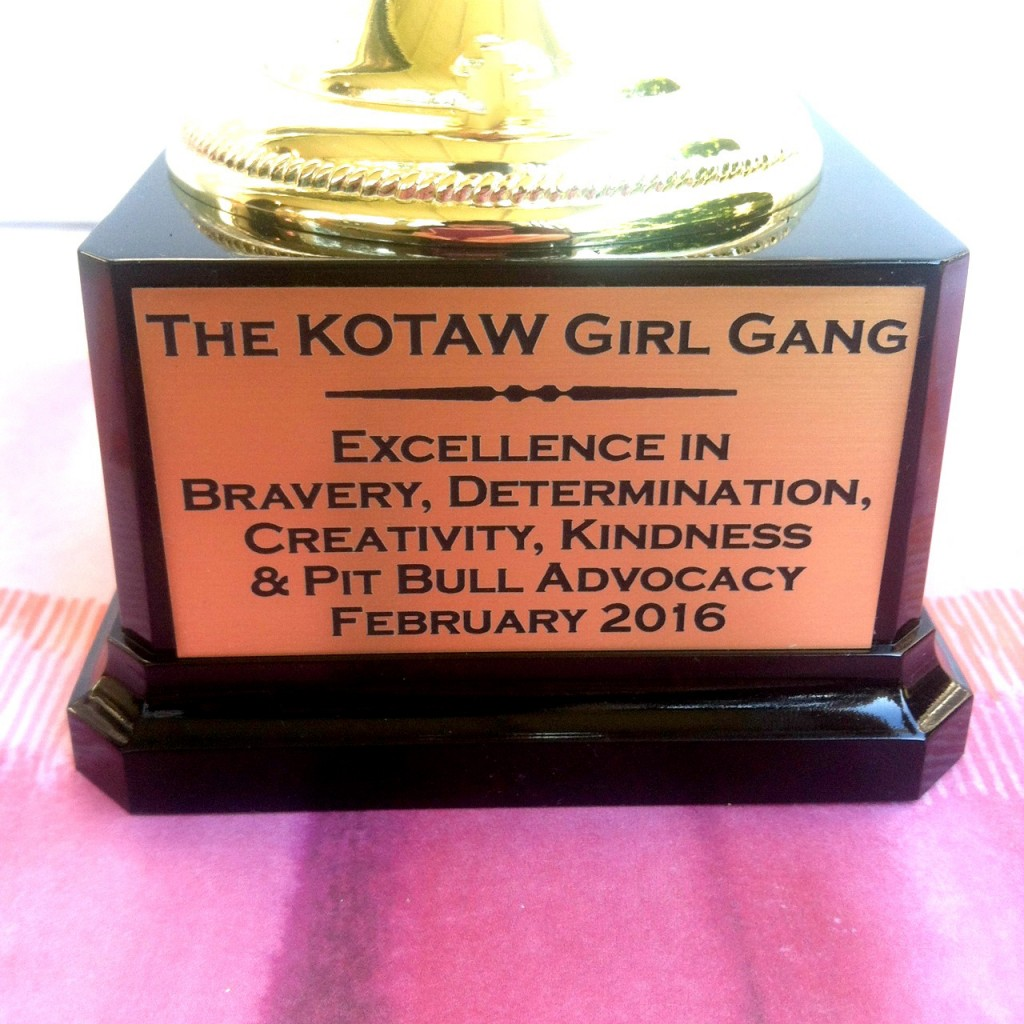 KOTAW Girl Gang award for bravery, determination, creativity, kindness and pit bull advocacy