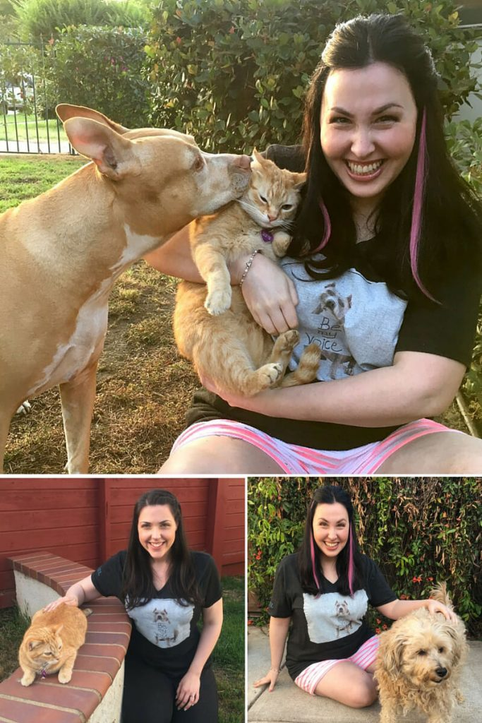 Ivy, KOTAW Content Marketing's Pit Bull Brand Ambassador, adopts a cat and a poodle | KOTAW Girl Gang supports Stand Up For Pits
